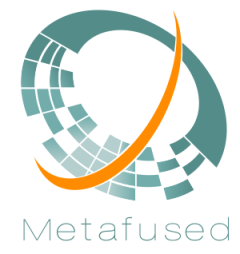 Metafused logo